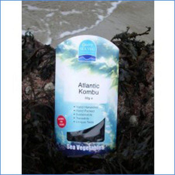 Atlantic Kombu / Kelp