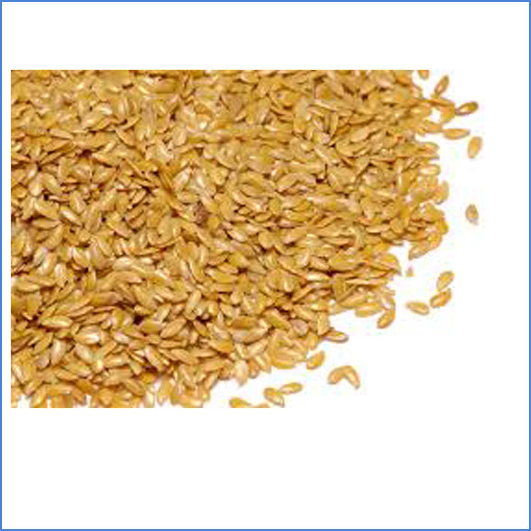Flax Seed Organic 500g