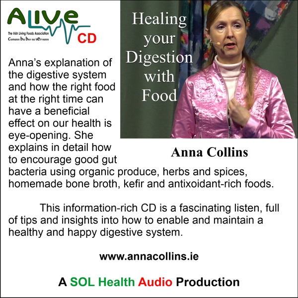 Healing Your Digestion with Food CD